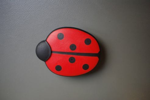 hunter rubber brush ladybug 1